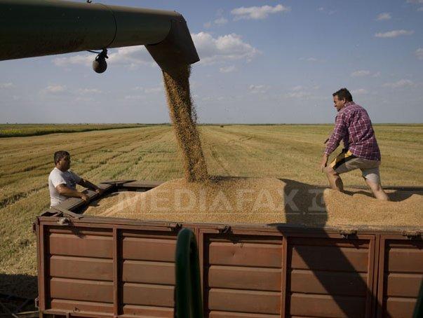 Rom�nia si Bulgaria vor profita de restrictiile impuse de Rusia exporturilor de gr�u