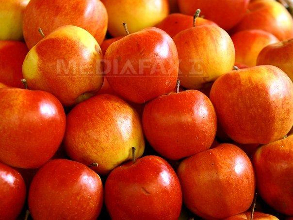Rusia ridică parţial embargoul impus importurilor de mere din Republica Moldova