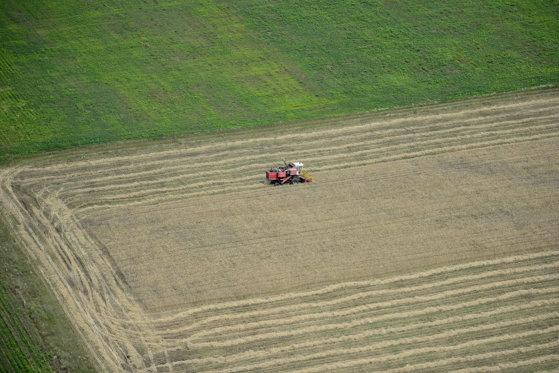 Imaginea articolului România este pe locul 9 în UE în ceea ce priveşte suprafaţa de teren agricol cultivată organic