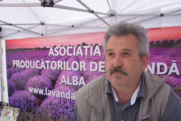 Imaginea articolului GALERIE FOTO Cultura de lavandă, o afacere profitabilă pentru 22 de familii din Alba