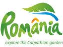 """Imaginea articolului Ministrul Turismului, după ce au apărut informaţii că logo-ul României va fi ilustrat cu o oaie: """"Frunza lui Udrea"""" nu poate fi schimbată până în 2020. Este o temă falsă!/Reacţia lui Traian Băsescu"""