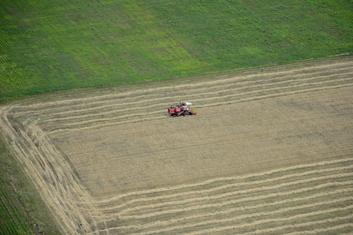 Om de afaceri: Eram curios dacă din agricultură se poate trăi. Se poate