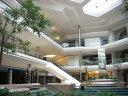 Imaginea articolului Mall-uri vs magazine online. Ce soluţii găsesc marile centre comerciale pentru atragerea publicului