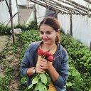 Imaginea articolului La 26 de ani a dat cariera din oraş pe afacerea din satul copilăriei. O tânără din Cluj produce legume bio pe terenul bunicilor: Sunt fericită că pământul mă răsplăteşte pentru atenţia pe care i-o acord, nu mă văd făcând altceva