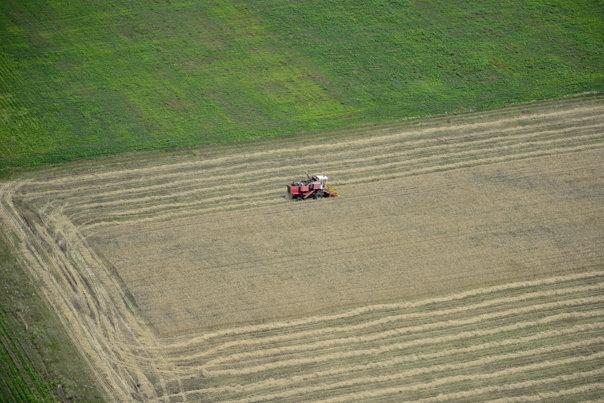 Imaginea articolului Cel mai mic preţ din UE: În România, terenul arabil costă mai puţin de 1 leu metrul pătrat/ Unde se vinde cel mai scump pământul | INFOGRAFIC