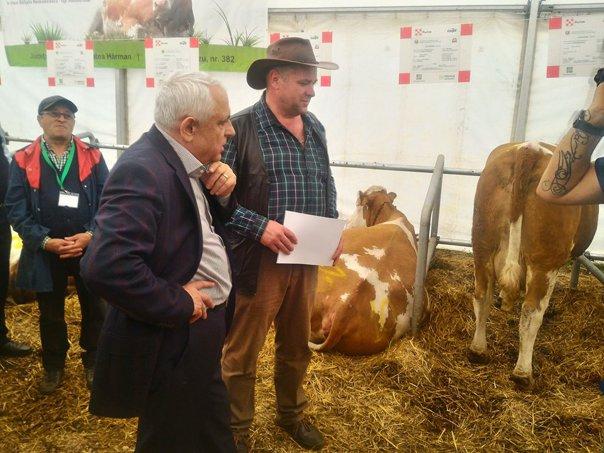 """Imaginea articolului Ministrul Agriculturii: Producătorii de lapte să intre în cooperative, să vândă produsele după modelul cărnii de porc/ Ce spune Petre Daea despre """"oaia la groapă""""   FOTO"""