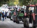 Imaginea articolului Rodbun intră pe piaţa maşinilor agricole pentru fermierii mici şi mijlocii, cu utilaje din Polonia