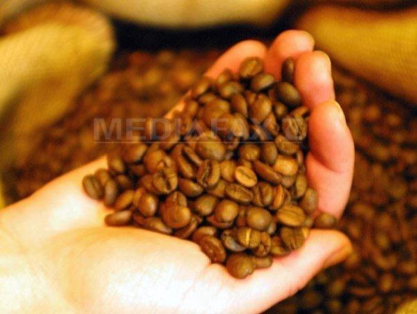 Imaginea articolului Cafeaua s-ar putea ieftini. Ultimele previziuni arată o creştere semnificativă a producţiei