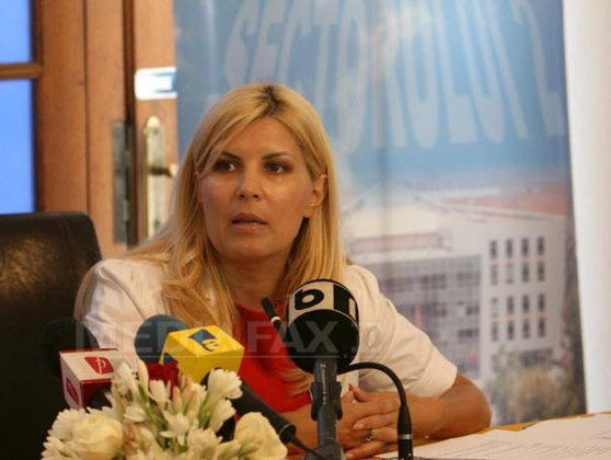Imaginea articolului Udrea vrea ca hotelurile RAAPPS să fie scoase la vânzare