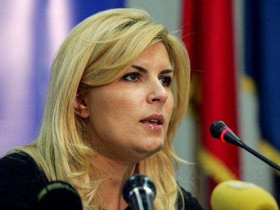 Imaginea articolului Udrea: Nu voi face parte din conducerea viitoare a PDL