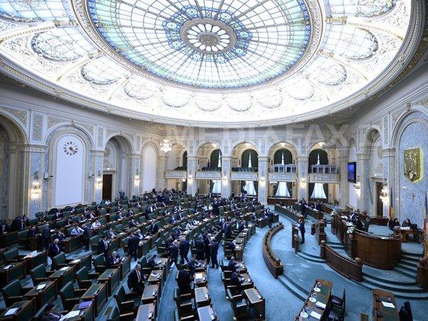Boboc (PNL): Vacanta sustinuta de PSD la Senat face sa nu putem ridica imunitatea senatorilor