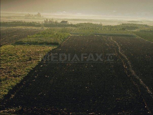 Presedintele CJ Ialomita a concesionat fraudulos un teren de 495 hectare. Prejudiciul este de 7 milioane lei