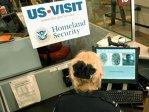 Imaginea articolului România vrea să încheie acordul cu SUA în combaterea terorismului, criteriu tehnic pentru Visa Waiver