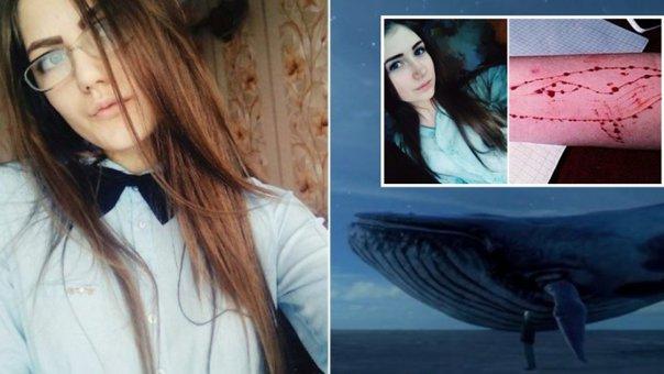 """Imaginea articolului Premierul moldovean Pavel Filip: Am discutat despre """"Balena albastră"""" în şedinţa guvernului de la Chişinău"""