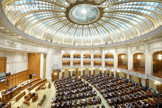 Imaginea articolului Şedinţa Parlamentului, întreruptă pentru câteva clipe din cauza unei borsete cu potenţial suspect