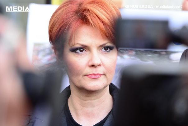"""Imaginea articolului Olguţa Vasilescu, despre cazul """"Belina"""": Ţinta este Liviu Dragnea. Sper că Plumb şi Shhaideh nu vor demisiona"""