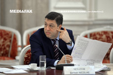 Imaginea articolului Şerban Nicolae: Nu am sesizat că ar exista susţinere pentru proiectul privind Ziua Maghiarilor