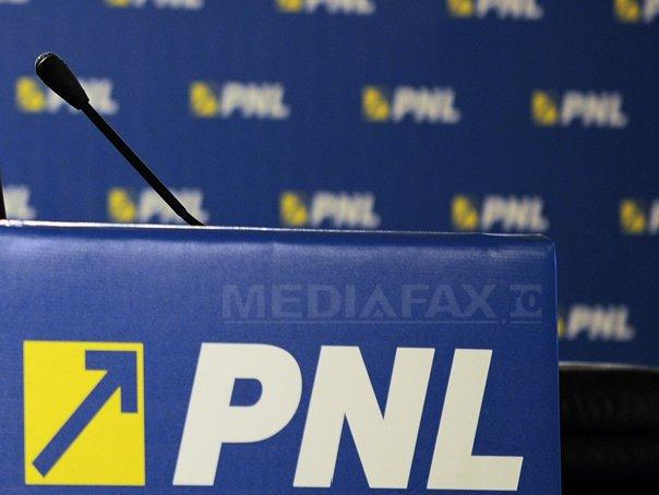 Mara Mareş,  preşedinte al Tineretului Naţional Liberal