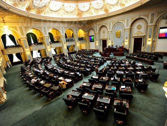 Imaginea articolului Senatorii au ţinut un scurt moment de reculegere în memoria victimelor de la Colectiv