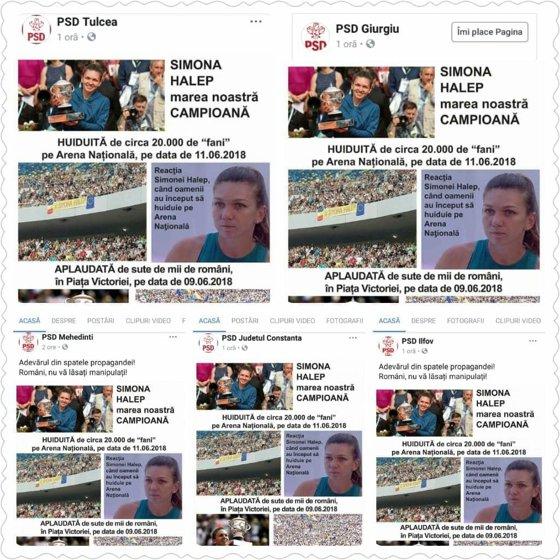 Imaginea articolului Organizaţii PSD, despre Simona Halep: Huiduită pe Arena Naţională, aplaudată la mitingul PSD