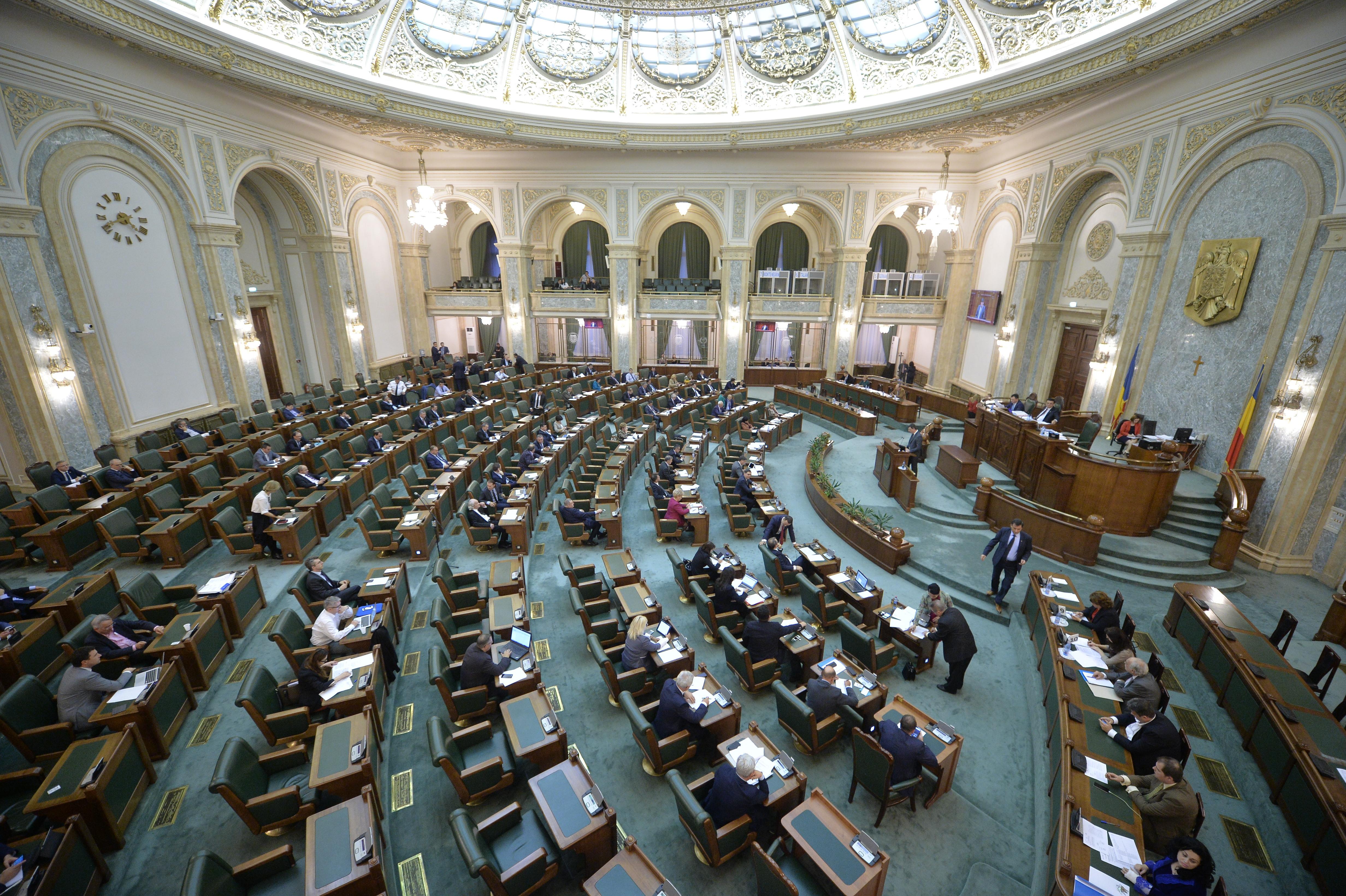 Senatul dezbate şi votează astăzi moţiunea simplă împotriva ministrului Economiei, Dănuţ Andruşcă