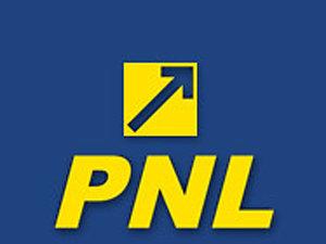 Ioan Turc: PNL trebuie să excludă o colaborare cu PDL