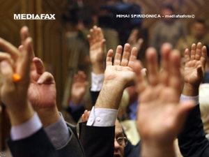 Senatul şi-a votat bugetul pe 2009 (Imagine: Mediafax Foto)