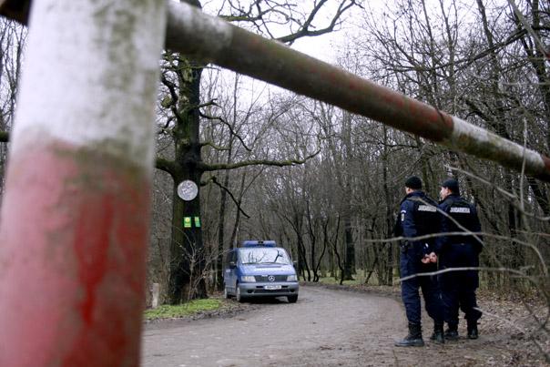 Un politist legitimeaza un conducator auto, in timpul unui filtru auto, in Ciorogarla, judetul Ilfov, joi, 29 ianuarie 2009.