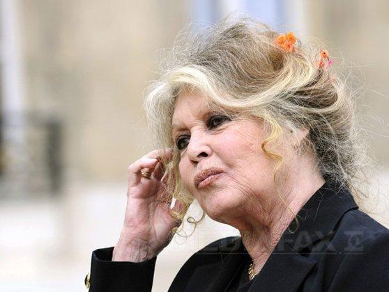 Imaginea articolului Brigitte Bardot: Sunt extrem de şocată să aflu că o răzbunare, care nu îşi are locul, se va abate asupra tuturor câinilor din România - SCRISOAREA adresată preşedintelui Băsescu