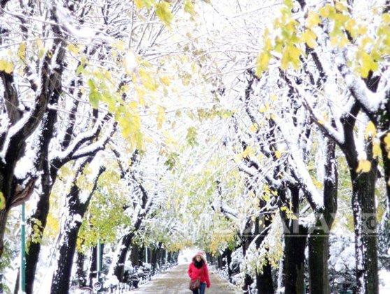 Imaginea articolului VREMEA până pe 15 decembrie. Cât de frig va fi şi când va ninge în fiecare regiune a ţării