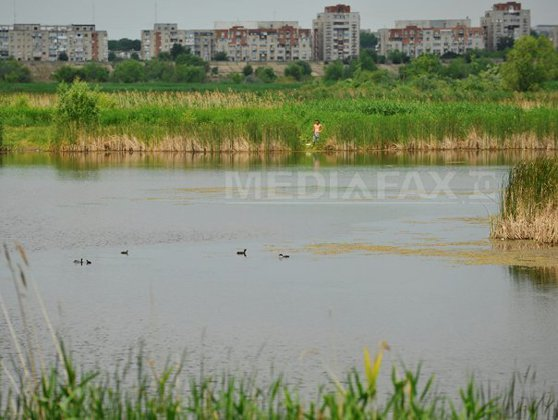 Imaginea articolului Viitorul Parc Natural Văcăreşti din Sectorul 4 va fi avizat administrativ de CGMB - proiect