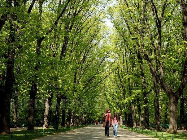 VREMEA luni si marti: Prognoza meteo �n tara si �n Bucuresti