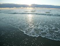 DESCOPERIRE surprinzătoare pe o plajă din România
