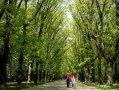 Imaginea articolului VREMEA miercuri şi joi: Prognoza meteo în ţară şi în Bucureşti