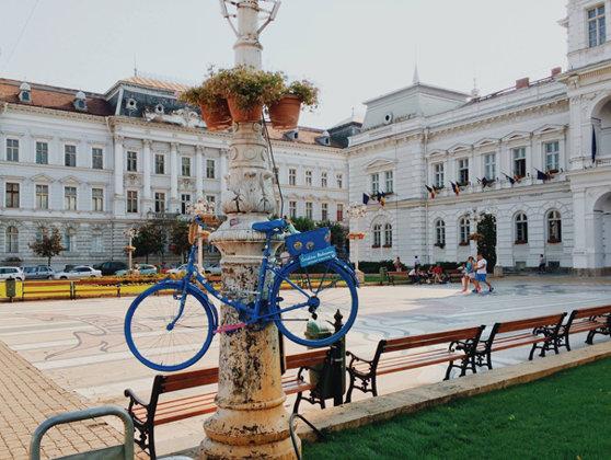 Imaginea articolului CAMPANIE de promovare a mersului pe două roţi: Centrul Aradului, împânzit de biciclete decorative agăţate de stâlpi şi copaci - GALERIE FOTO