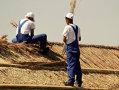 Imaginea articolului REPORTAJ: Deţinuţii învaţă meserii tradiţionale şi construiesc case ecologice în Delta Dunării