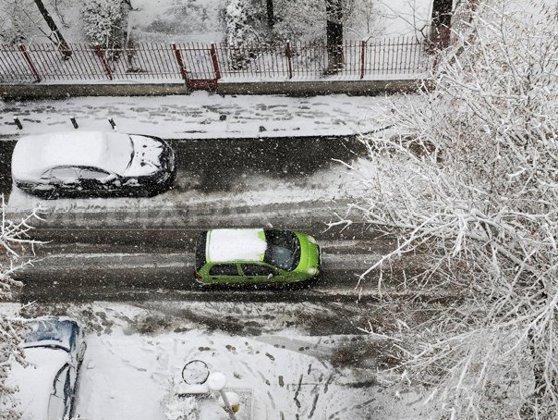 Imaginea articolului ISU Bucureşti: 191 de copaci şi stâlpi de electricitate căzuţi, peste 130 de maşini avariate