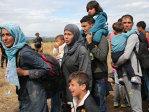 Imaginea articolului Centrul pentru refugiaţi de la Tăşnad nu va mai fi înfiinţat