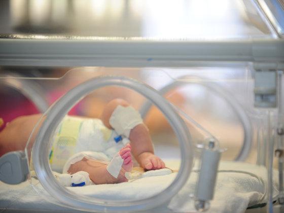 Imaginea articolului Cazul copiilor din Argeş - Ministrul Sănătăţii: Veştile sunt bune, copiii sunt mai bine decât ieri. Sursa îmbolnăvirilor nu a fost încă depistată