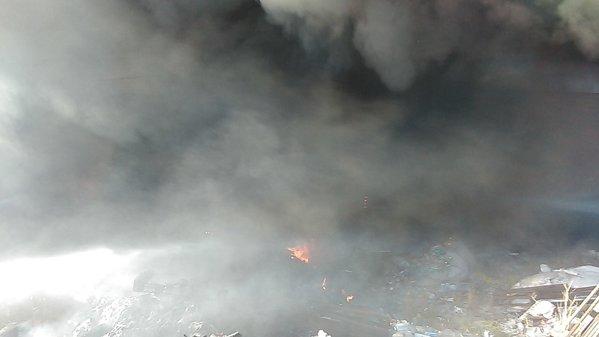 Image result for FUM DENS  IMAGINI