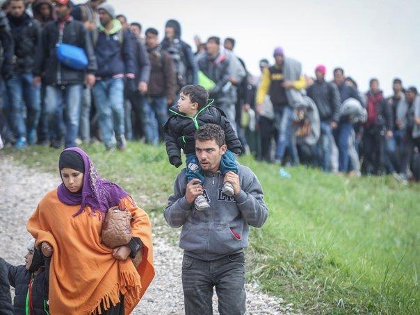Opt migranţi care au trecut Dunărea cu o barcă au fost prinşi de poliţiştii de frontieră din Dolj. Ei încercau să ajungă în Austria - VIDEO