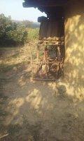 Imaginea articolului Anchetă după publicarea unei fotografii cu un copil închis într-o cuşcă pentru animale - FOTO