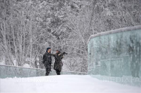 Imaginea articolului 9000 de case din judeţele Moldovei nu au energie electrică din cauza ninsorii şi a viscolului / Două comune din Bacău nu au în continuare energie electrică