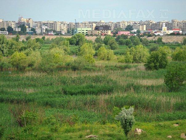 Imaginea articolului Ministrul Mediului: Parcul Văcăreşti va fi trecut în administrarea Primăriei Capitalei şi a unui ONG