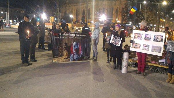 Imaginea articolului Cluj: Protest faţă de exploatarea animalelor, participanţii au cerut interzicerea circului în oraş