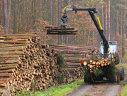Imaginea articolului Ministerul Apelor şi Pădurilor: Vom supraveghea atent, împreună cu Gărzile Forestiere, activitatea Schweighofer