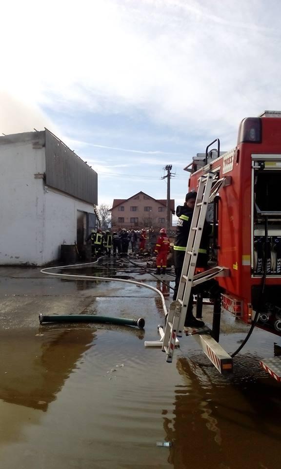 Imaginea articolului FOTO Incendiu în Sibiu la o hală de depozitare cartoane