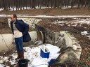 Imaginea articolului GALERIE FOTO Lacul Ciric, poluat de substanţele cu care s-au degivrat aeronavele la Aeroportul Iaşi