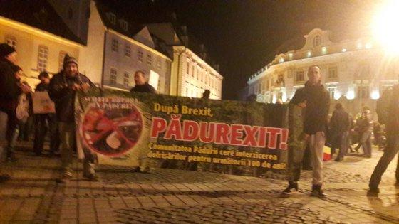 Imaginea articolului Proteste la Sibiu, împotriva Guvernului şi tăierii pădurilor: După Brexit, Pădurexit