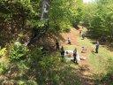 Imaginea articolului Cetăţile dacice Sarmisegetusa Regia şi Costeşti-Cetăţuie au fost ecologizate de peste 100 de voluntari